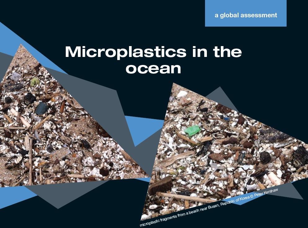 Microplastics leaflet