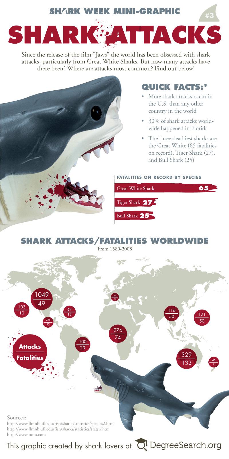 Infographic - shark-attacks