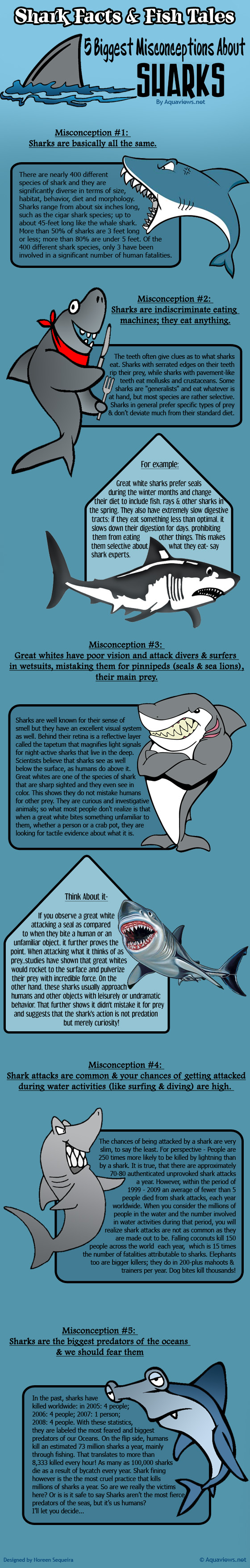 Shark-Infographic
