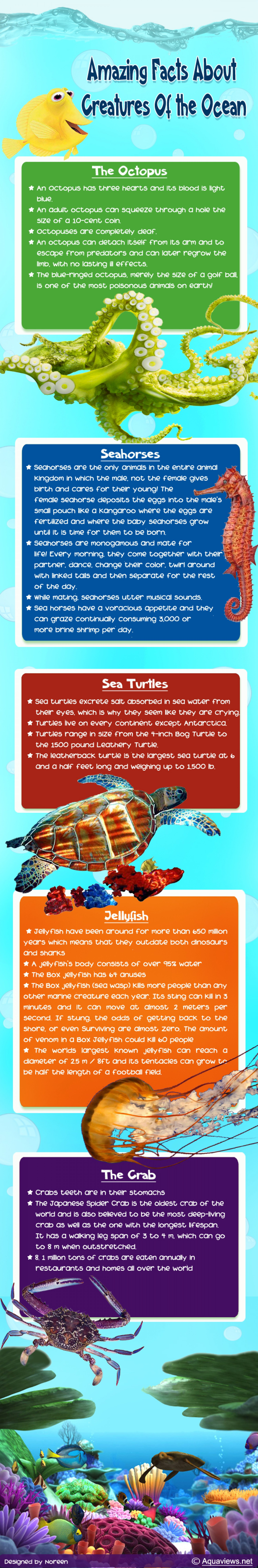 amazing-facts-about-creatures-of-the-ocean